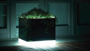 Cubotti Light, Floreros con iluminación